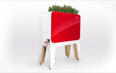 Caldo intenso ed elettricità introvabile? Ecco il frigorifero alimentato dall'evaporazione delle piante (fatto da Coca-Cola)