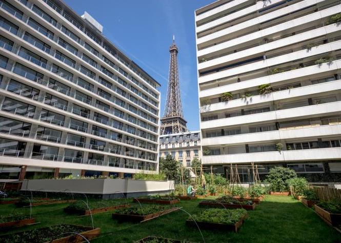 Orti urbani, Parigi apripista: frutta e verdura sui tetti