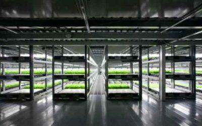 Il Giappone apre la prima fattoria-robot