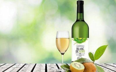 Poco alcolico e aromatico, ecco il vino di kiwi