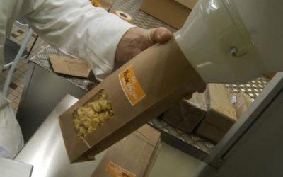 Francia: la pasta iperproteica per gli sportivi è fatta con grilli e cavallette