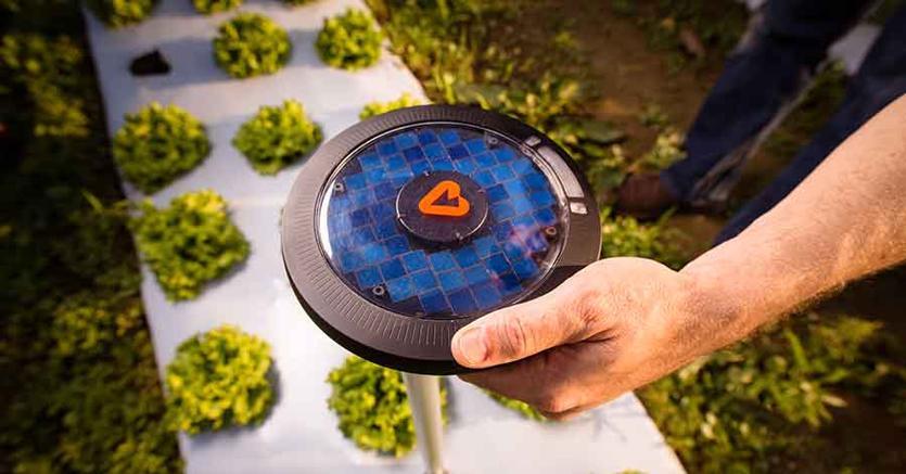 """L'inventore della GoPro scommette sul """"frisbee"""" che legge tutti i dati delle piante (e decide irrigazione e raccolta)"""