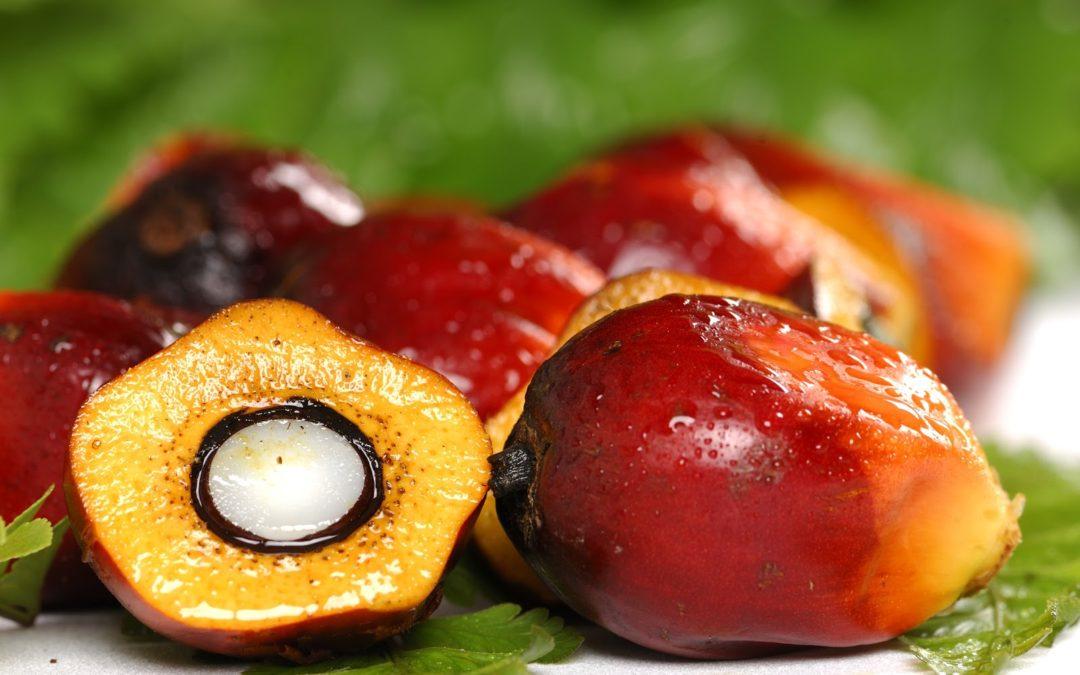 Via l'olio di palma, restano i grassi
